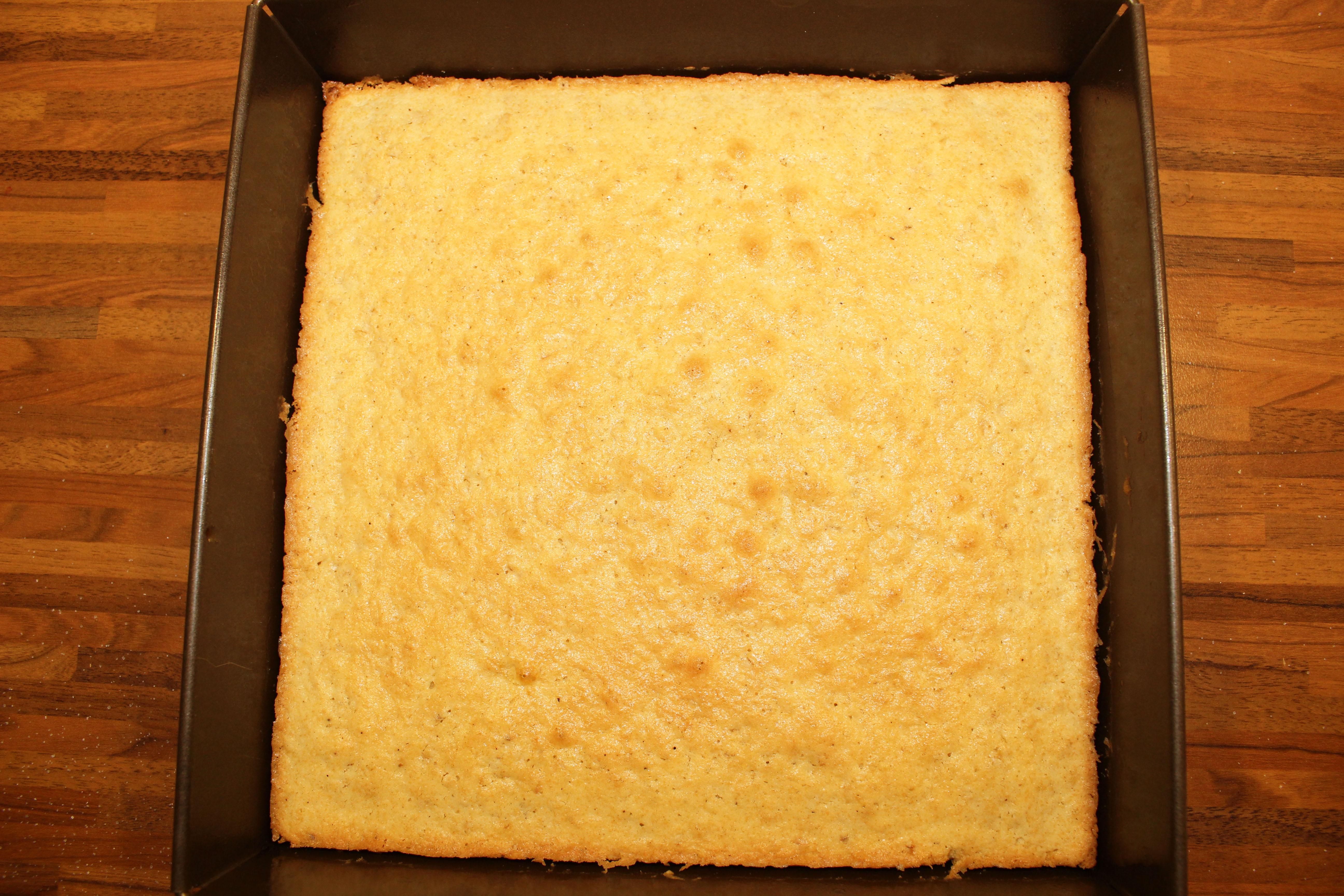 Johannisbeer-Baiser Torte_3812-1