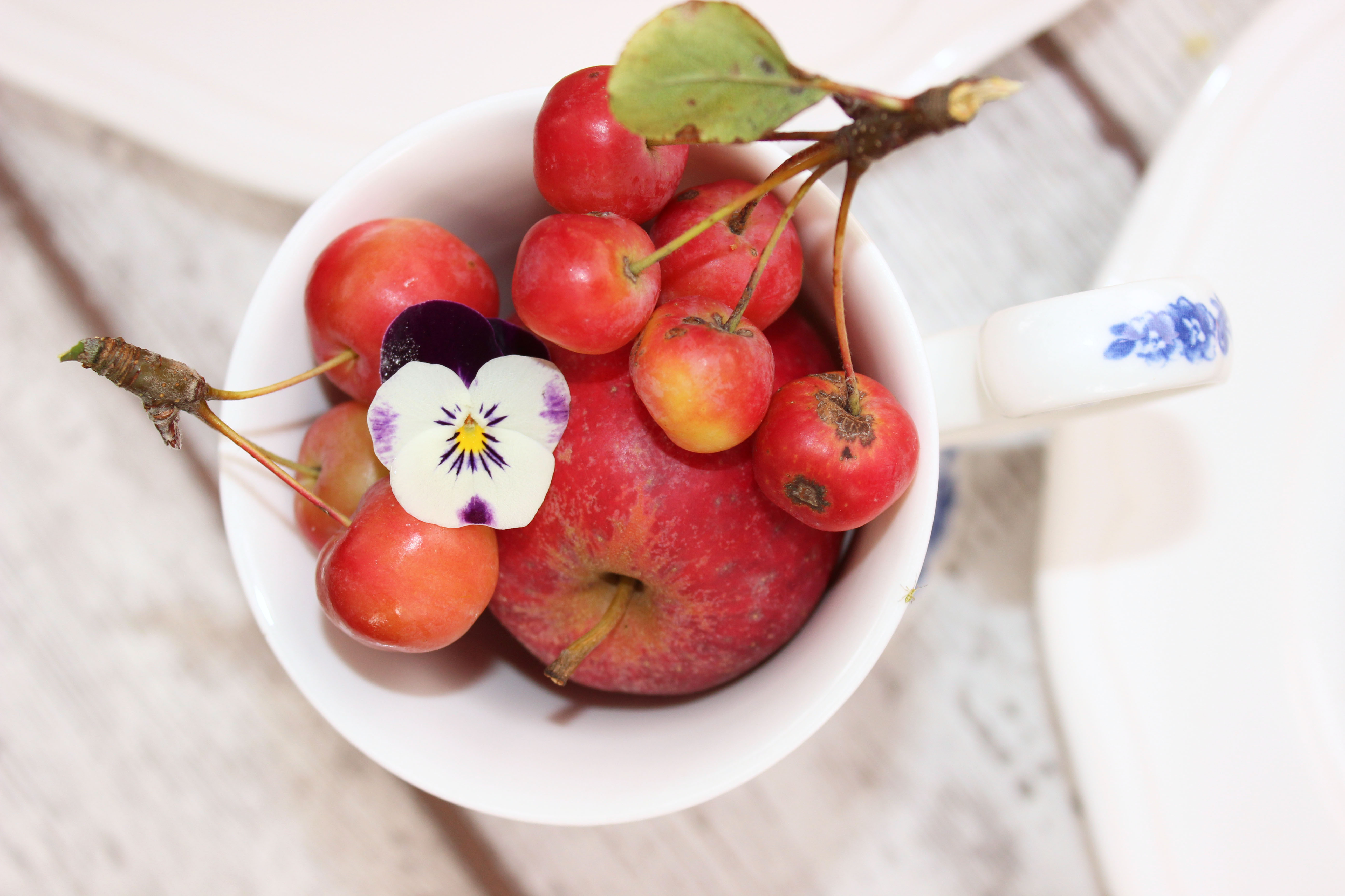 Apfel-Quitten-Torte_4528_1