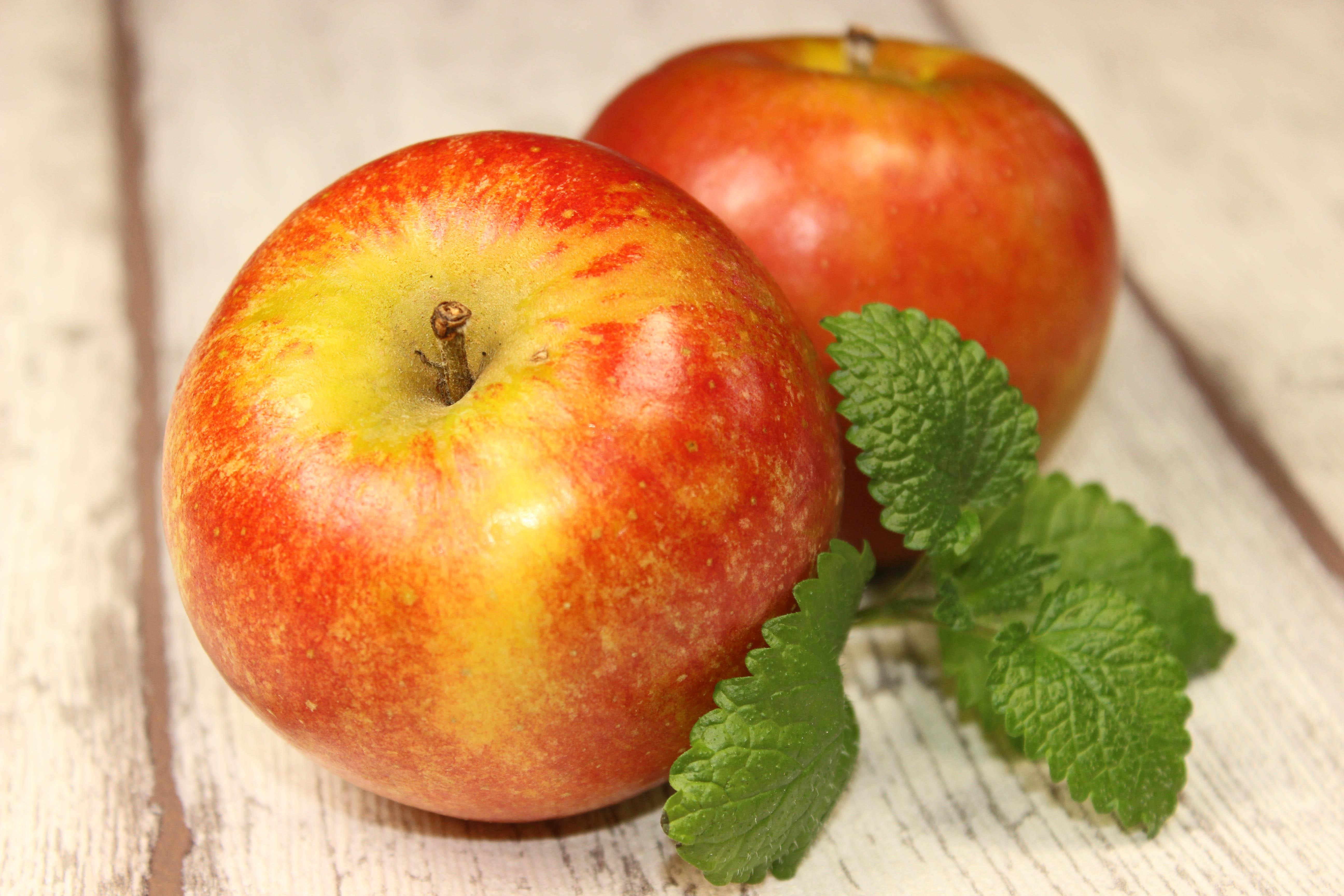 Brioche au pommes_a0046